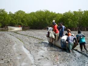 Senegal: Village Life