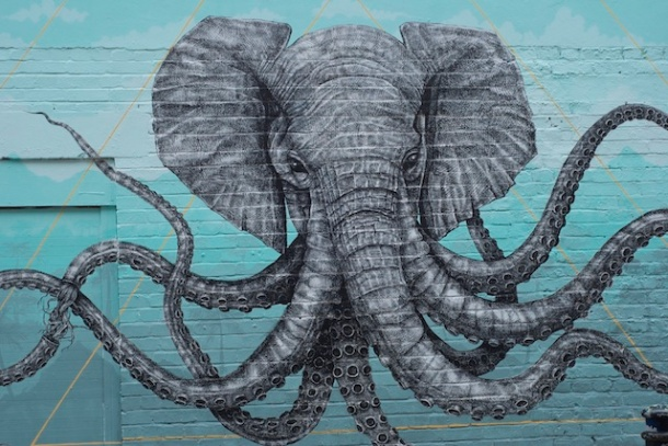 Alexis Diaz - Elephant Octopus