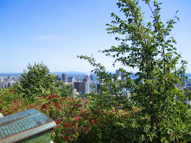 Mount Royal Park - Montreal, Canada