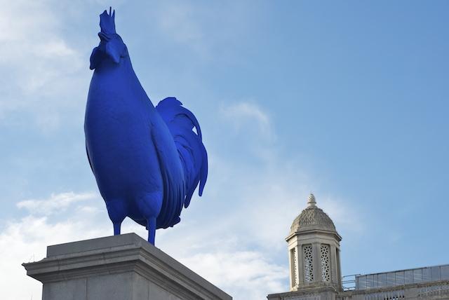 Trafalgar Square - Blue Rooster - London