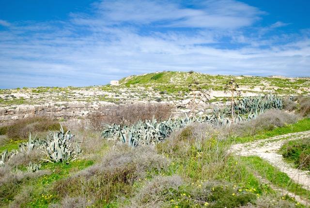 Gozo Landscape 2
